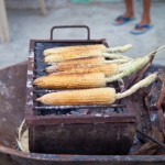 Fresh-Corn-Organic-Food-Punta-Mita