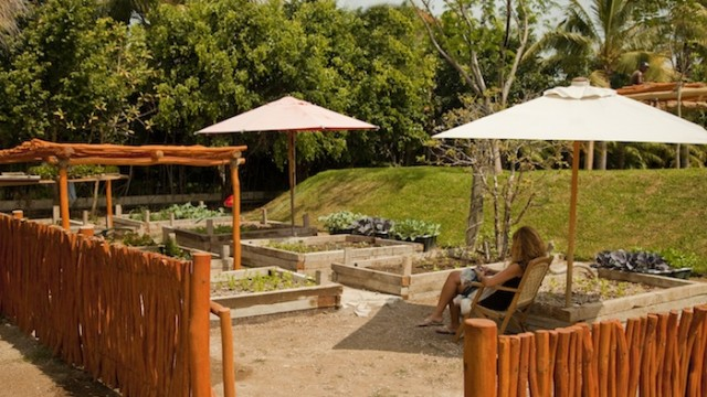 Vacation-Rental-with-garden-punta-mita